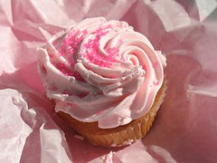 Cupcake in Central Park, New York
