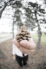 an offer (the half-blood prince) Tags: trees portrait selfportrait me bokeh tie fisheye bryan remote pinecone outtake thehalfbloodprince nikkor105mmf28fisheye
