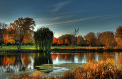 Malone park in the fall (ImAfUzzyOne-Trying to get back to photography :o() Tags: trees color fall minnesota hdr wabasha
