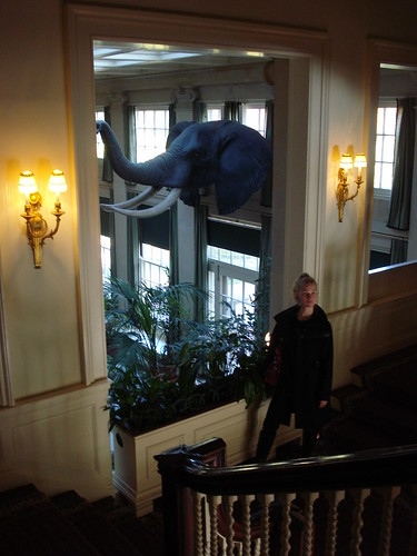 Cheryl with her prize winning elephant, George Eastman House