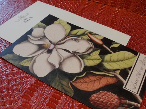 Magnolia Stationery by FrontPorchStudio.