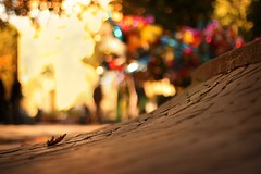 balloons at kefalari:  319/365 (helen sotiriadis) Tags: street trees colors canon balloons leaf published dof bokeh athens depthoffield cobblestone greece 365 canonef50mmf14usm kefalari kifissia canoneos40d   toomanytribbles dslrmag updatecollection