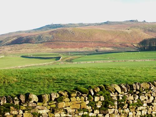 Bardon Moor
