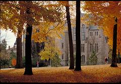 Fall_at_St._Olaf (Upper Midwest HERC) Tags: umw herc umwherc uppermidwestherc