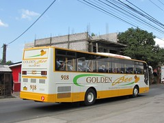 Rear: GB Almazora (Api III =)) Tags: man bus golden transport bee gb universe corp logistics 918 16290 almazora