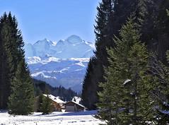 07 003 09 - Savoie, Praz de Lys, le Mont-Blanc (jeanpierreossorio) Tags: montagne village neige montblanc