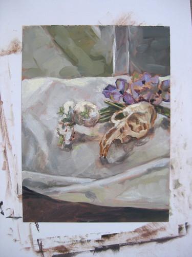 muskrat skull still life