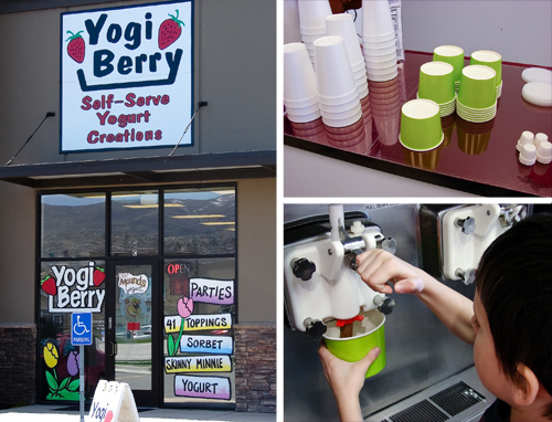 yogi berry yogurt shop review