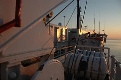 croatian ferry july 2009 097 (milolovitch69) Tags: sunset sea ferry dawn croatia adriatic ancona july2009