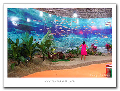 Salão do Turismo 2009