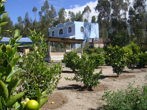3726907606 7756d15250 Retire in Ecuador on an Organic Farm