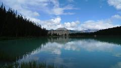 20090711 Stampede-Canadian Rockies Trip 903 (moheroy) Tags: canada alberta lakelouise banffnationalpark canadianrockies plainofsixglacierstrail stampedeandcanadianrockiestrip