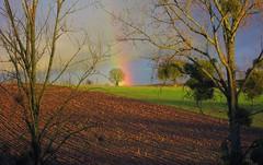Arco iris (coquelinette81) Tags: paysage campagne arcenciel canonixus900ti
