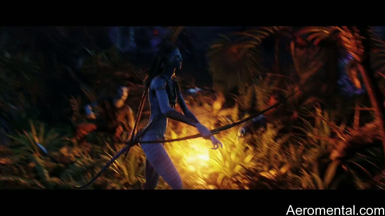 película Avatar linda navi