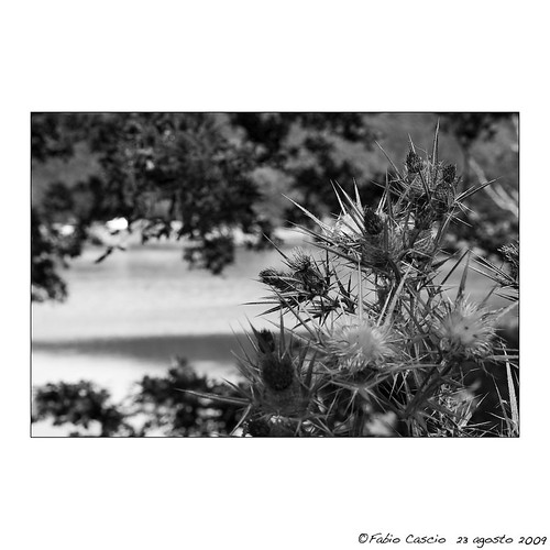 Sicily: Lake Maulazzo 17