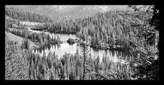 twin lakes (19) (dan stefani) Tags: pictures fish reflection cows mystical twinlakes mammothlakes 2009 enchanted rockcreek lakemary owensriver danstefani