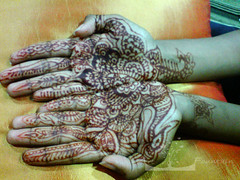 Henna (Art Fountain) Tags: floral hands indian drawings peacock designs bridal henna mehndi mehendhi indiandrawing decoratedhands bridalhanna