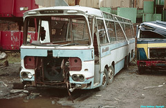 Any ideas as to which one it was? (Lady Wulfrun) Tags: coach scrapyard westmidlands walsall duple bedfordval val70 dupleviceroy scrapbus busbreakers 27thnovember1984 scrapcoach clarkslanewillenhall