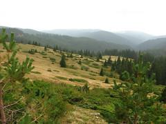 IMG_1025 (Deirdri) Tags: bulgaria rila belmeken