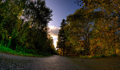Fall Road (lundwall) Tags: road autumn trees sky fall leaves forest leaf woods skies sweden wide fisheye tokina sverige hdr 1017 vstragtaland bors boras 1017mm viskafors