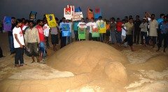 Chennai, India (350.org) Tags: india turtle 350 chennai 350ppm