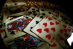 88 kings and queens (BaileyRaeWeaver) Tags: building sunglasses cat king fingers shy queen livingroom 88 deckofcards yellowbird beelee baileyweaver baileyraeweaver baileyonflickr baileyraephotography baileysjunk