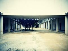 Como un sueño. (Señor MiQuel.) Tags: blue azul university arboles alicante panoramica universidad contraste angular columnas abandonado sanvicente