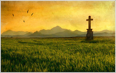 West (Jean-Michel Priaux) Tags: sunset panorama orange sun sunlight france art monument nature field photoshop painting landscape nikon cross wheat religion dream peinture dreaming alsace crucifix paysage hdr montain vosges anotherworld croix d90 valff priaux abigfave platinumphoto flickrdiamond croiw