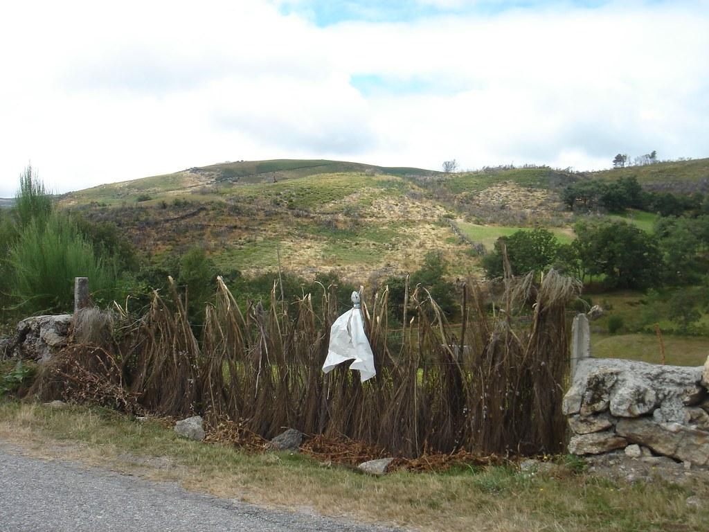 Brandim - Montalegre