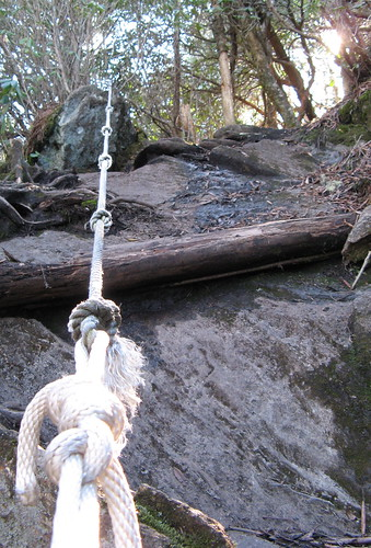 Ropes on the Deep Gap Trail
