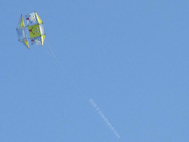 P1060297_kite