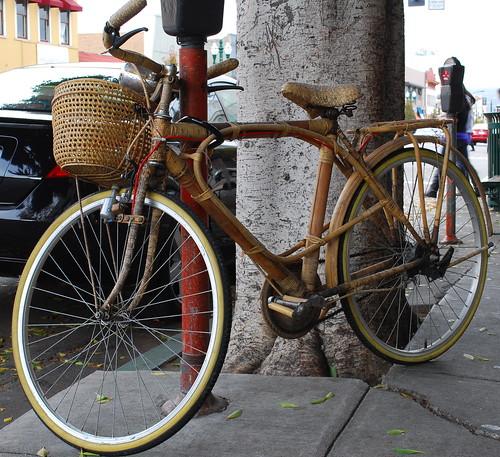 Tiki Bike