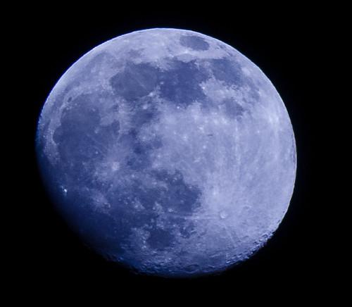 Blue Moon - 174/365 - 29 November 2009