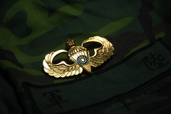 Airborne Wing (chung jen) Tags: army wing airborne 陸軍 傘徽
