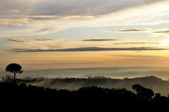 tramonto sulla valle tiberina (luporosso) Tags: sunset naturaleza nature landscape tramonto valle natura frog nebbia paesaggio d300s nikkor1685vr luporosso nikond300s valletiberina