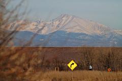 Mount Evans (dcstep) Tags: morning urban usa nature canon colorado urbannature 7d mountevans cherrycreekstatepark ef400f56l canon7d 12192009