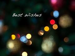 My Best Wishes (Andrea Rapisarda) Tags: christmas love beauty peace bokeh joy card feliznatal pace natale bellezza auguri happychristmas christmascard feliznavidad buonnatale bestwishes eleganza joyeuxnoel gldeligjul cartolinadauguri fourthird quattroterzi felicenatale rapis60 andrearapisarda olympuse620 delicatetones