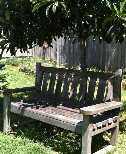Garden seat under the loquat tree
