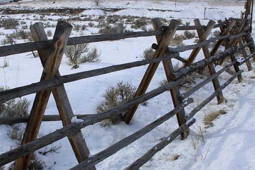 Buck Fence
