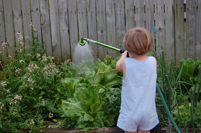 gardenhelper