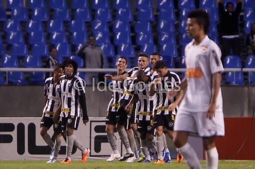 Os jogadores do Botafogo comemoram gol de Fabio Ferreira