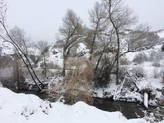 IMG_2196 (augiebenjamin) Tags: winter provocanyon mountains orem provo lindon utah snow clouds trees sky byu brighamyounguniversity art