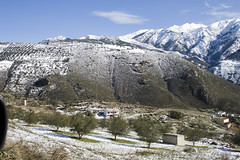 IMG_8033 (Miguel Angel Mora (GSi_PoweR)) Tags: espaa snow andaluca carretera nieve nevada sunday bosque granada costadelsol domingo maroma mlaga mountainroad meteorologa axarqua puertomontaa zafarraya sierraalmijara caosalcaiceria