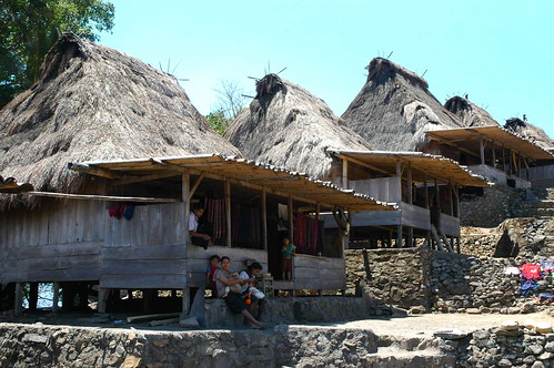 Ngadha Traditional Houses in Bena