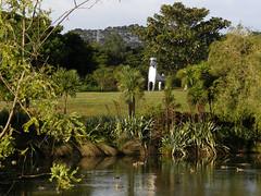 2007-12-23-Stoneleigh-2007-11-02-Kuri Topiary (russellstreet) Tags: newzealand sculpture auckland nzl manukau aucklandbotanicalgardens stevewoodward sculpturesinthegarden2007 stoneleighsculpturesinthegarden2007 kuritopiary