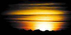 Red Echoes (Preem) Tags: africa sunset sun nature silhouette soleil pentax coucher malik tamron contrejour hurghada egypte afrique baptiste twop 70300 preem silhouetto k10d tamronaf70300mmf456dildmacro justpentax pentaxart