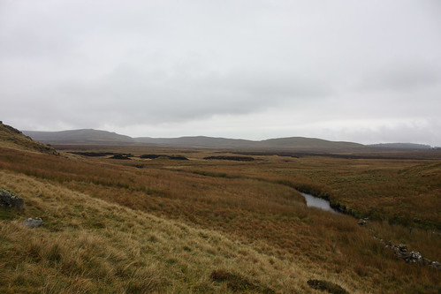 Approaching the peat bog