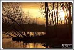 Photo 151 H 182 (Alain Crosnier) Tags: shadow sun tree sunrise soleil ombre arbre levdesoleil rivirerichelieu alaincrosnier imageaccom