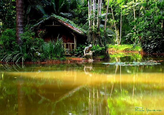 Sector de la Amazonía en el Jardín Botánico de Río de Janeiro, muestra fotos misteriosas. Brasil.