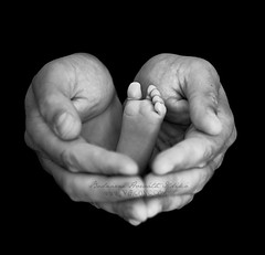 (- Virgonc -) Tags: blackandwhite bw baby white 3 black feet foot blackwhite nikon hand heart little finger father small fingers newborn  d300 dady virgonc wwwvirgonccom